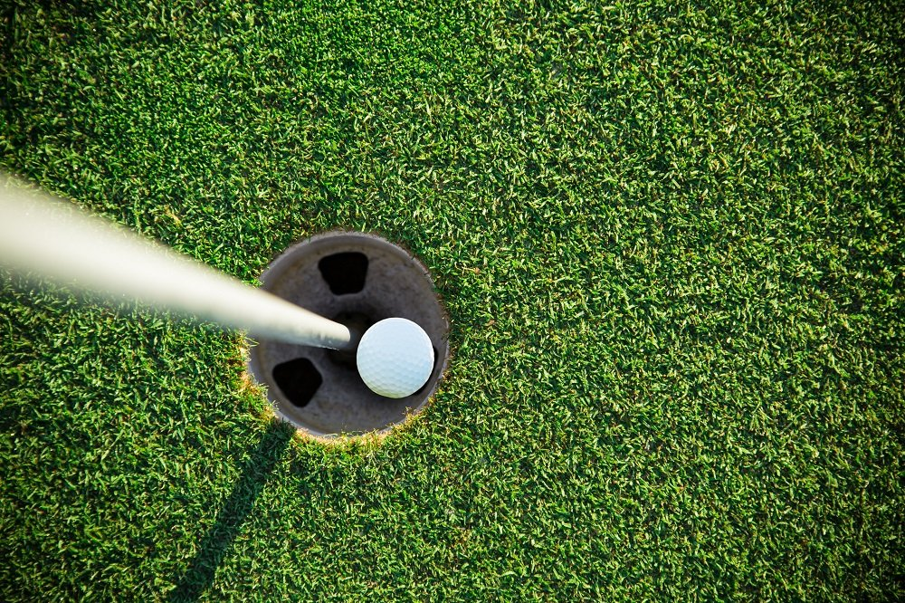Close-up of golf